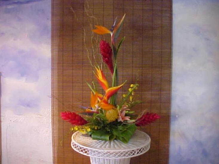 Tropical Arrangement 10